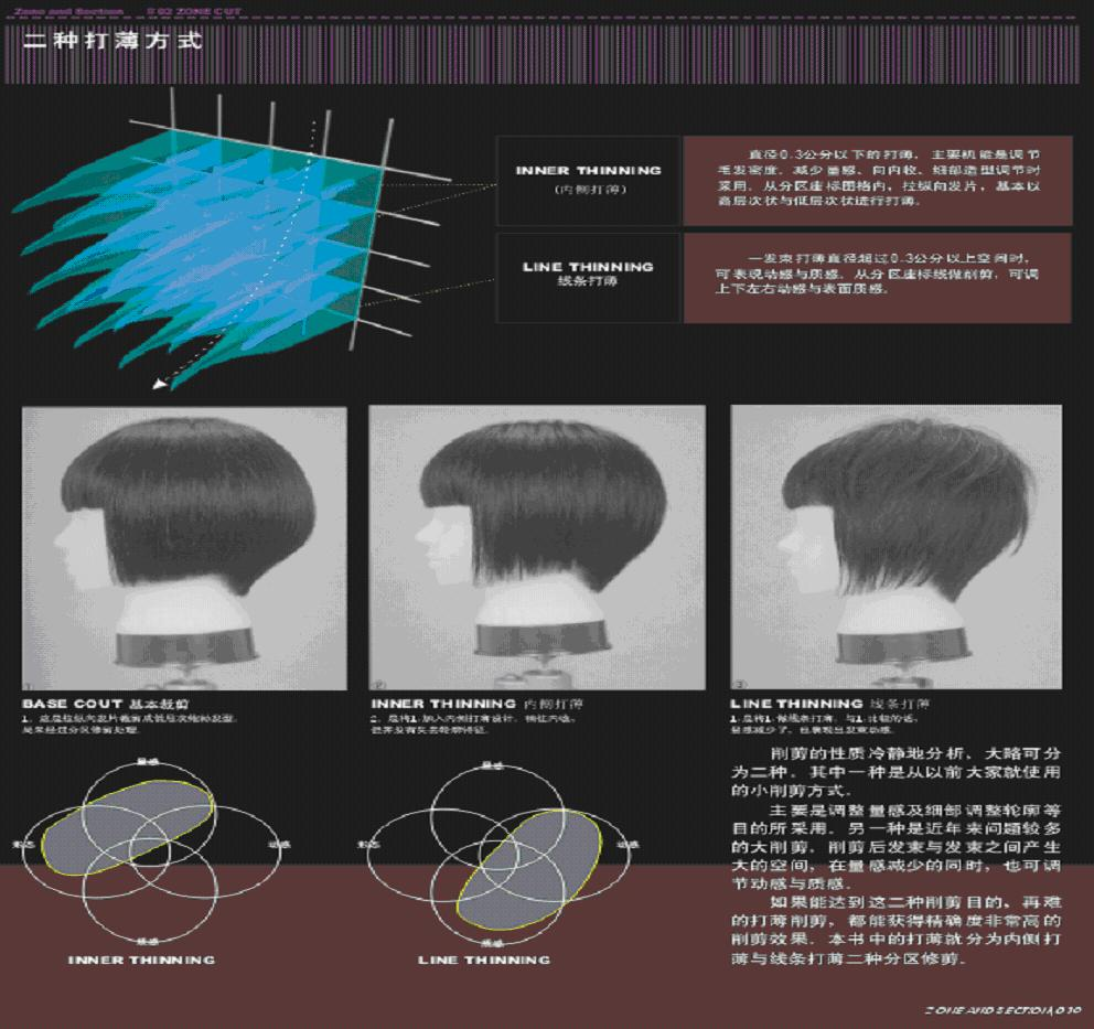 发型设计分区图